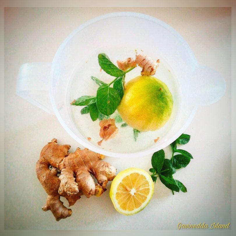 Acqua aromatizzata limone, zenzero e menta